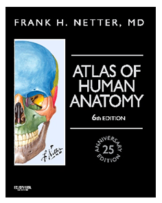 anatomy coloring book 6th edition skyscape 39 s netter 39 s atlas of human anatomy mobile medical